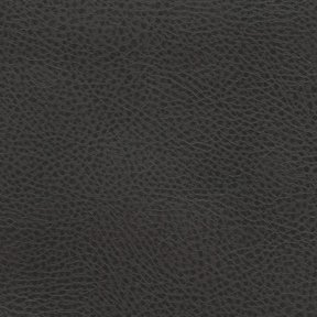Picture of Rodeo Leather upholstery fabric.