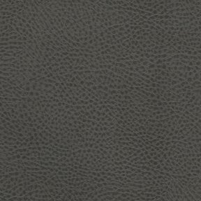 Picture of Rodeo Charcoal upholstery fabric.