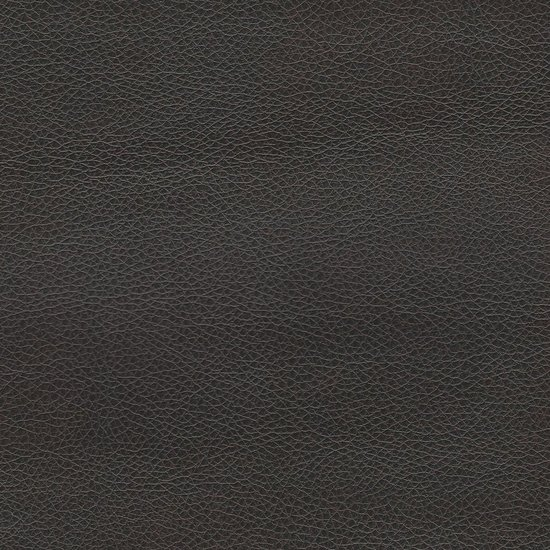 Picture of Renegade Leather upholstery fabric.