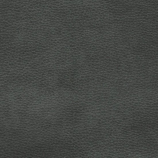 Picture of Austin Jet upholstery fabric.