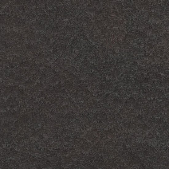 Picture of Fiji Leather upholstery fabric.